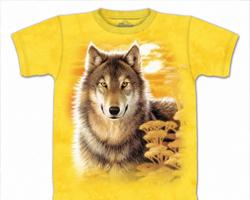 Печать на футболках и прочих вещах