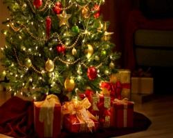 Красивая история новогодней ели