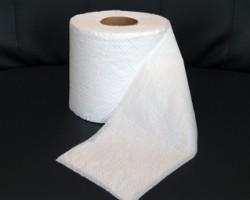Выбираем туалетную бумагу для себя