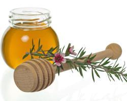 Купить мед манука в Москве - это просто!