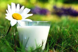 Смесь на козьем молоке - mamakoru