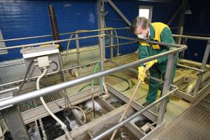 Ecoservice-primru - утилизация биологических отходов