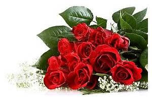 Еnjoyflowers.ru - заказ цветов недорого
